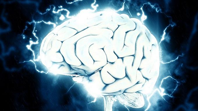 脳への刺激